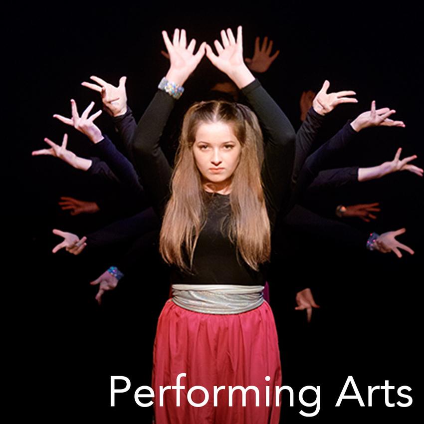 Performing arts website